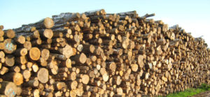 Logs from John H Roberts